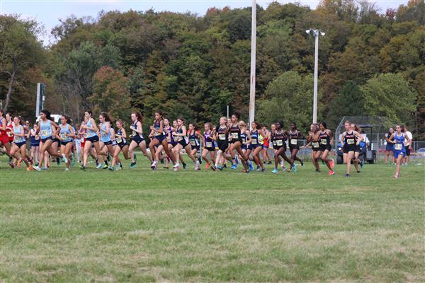 Girls Varsity Cross Country Mid-October Update